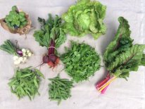 Veg box 4 small