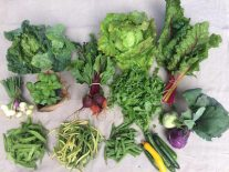 Veg box 4 large