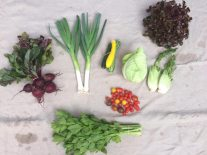 Veg box 8 small